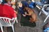 Erste Hilfe Kurs in der Hundeschule Hambühren