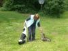 Hundeschule Wietze Bild32