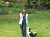 Hundeschule Wietze Bild34
