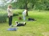 Hundeschule Wietze Bild43