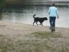 Hundeschule Wietze Bild65